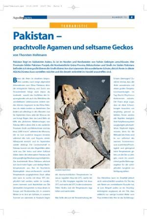 Pakistan - prachtvolle Agamen und seltsame Geckos