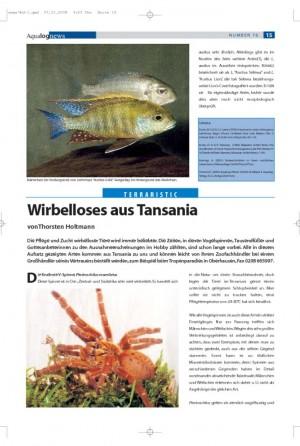 Wirbelloses aus Tansania