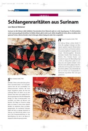 Schlangenraritäten aus Surinam