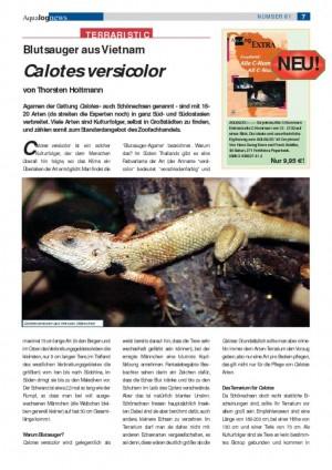 thumbnail of Calotes versicolor