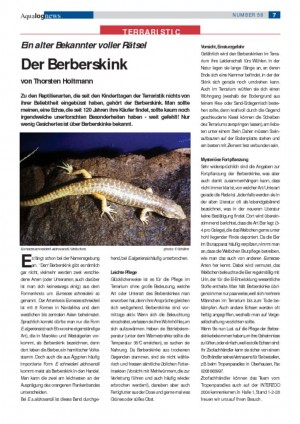 thumbnail of Der Berberskink