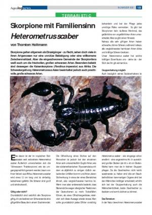 Skorpione mit Familiensinn